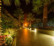 tuin-bij-nacht